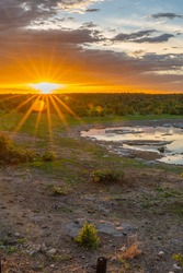 Moringa waterhole Halali camp in Etosha national park at sunset in Namibia, vertical
