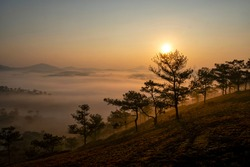 Morning at Daphu hill, Dalat, Vietnam. Foggy dew and cold