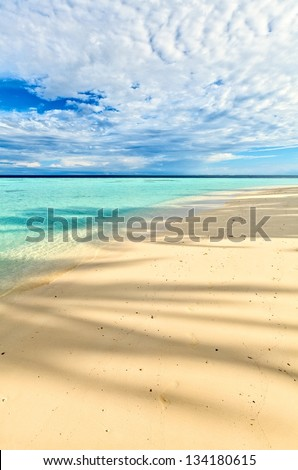 Morning beach for relax,  under the shade of a palm tree