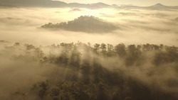 Morning clouds on the mountain, hunting clouds in Dalat