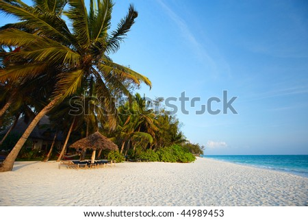Morning colors of beautiful tropical beach of Zanzibar island, Tanzania