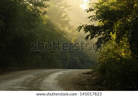 morning country road