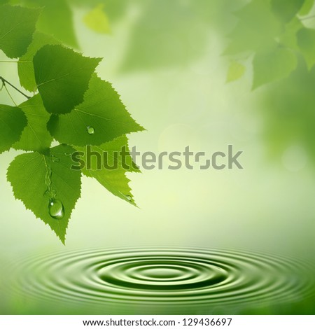 Morning dew. Abstract natural backgrounds for your design