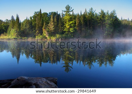 morning fog at algonquin park