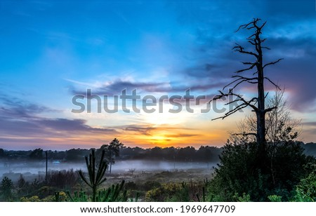 Morning fog at dawn nature landscape. Early morning dawn fog. Fog at early morning dawn