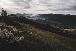 Morning fog in mountain valleys, Bieszczady Mountains, Poland