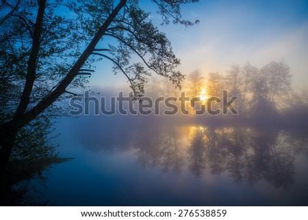 Morning fog on a forest river, tranquil scene. Vorskla river, Ukraine