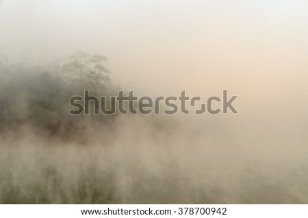 Morning fog over lake with pine forest at Galyani Vadhana District in Thailand #378700942