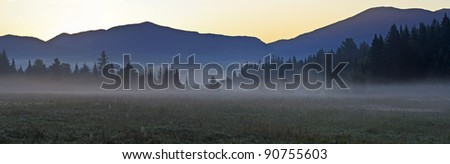 Morning fog settled in the fields and valleys just before sunrise in the Adirondack Mountains of New York