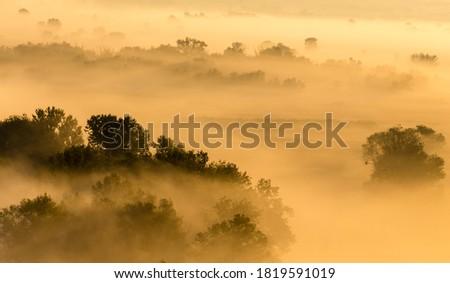 Morning foggy valley at sunrise, yellow calm autumn landscape near Zmiiv,  Kharkiv region, Ukraine Zdjęcia stock ©