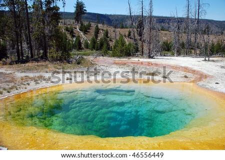 Morning Glory in Yellowstone - stock photo