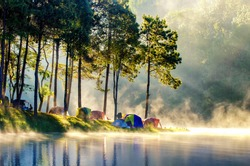 Morning in forest with camping in the mist
