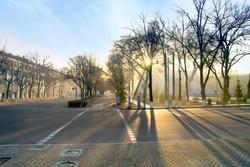 Morning in Tashkent