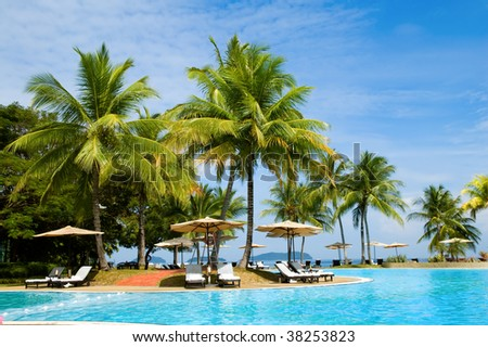 Morning in tropical hotel, with palm tree and swimming pool #38253823