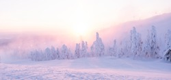 Morning in winter, a lot of snow on the trees and snowdrifts. Mountain in Lapland and the sun's rays.