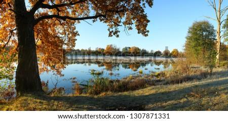 morning landscape morning light #1307871331