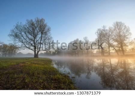 morning landscape morning light #1307871379