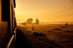 Morning landscape nature view side way from train windown