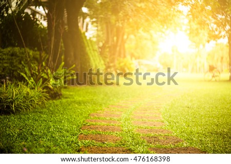 morning light through leafs in park - Shutterstock ID 476168398