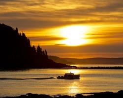 Morning Lobster Boat
