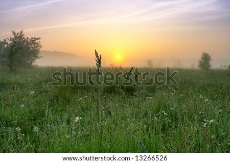 Morning mist. - stock photo