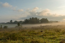 Morning mood on an early autumn day in the Uckermark, Germany