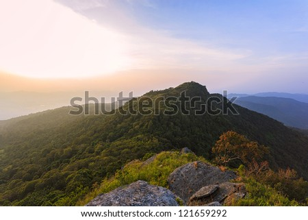 Morning mountain in forest two tone