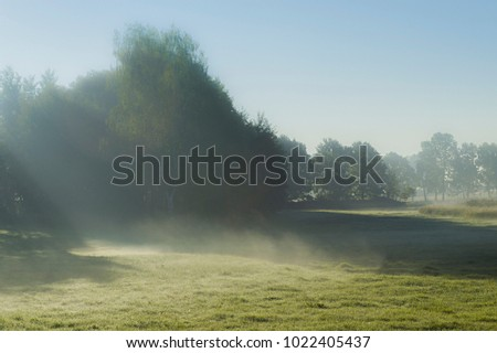 Morning next to the forest. Sunny rays fall through the trees early in the morning. Fog is rising over the grass. Beautiful sky with clear weather. #1022405437