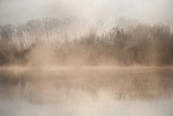 Morning on the river early morning reeds mist fog and water surface on the river