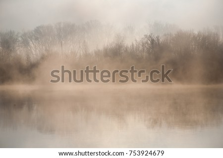 Morning on the river early morning reeds mist fog and water surface on the river #753924679