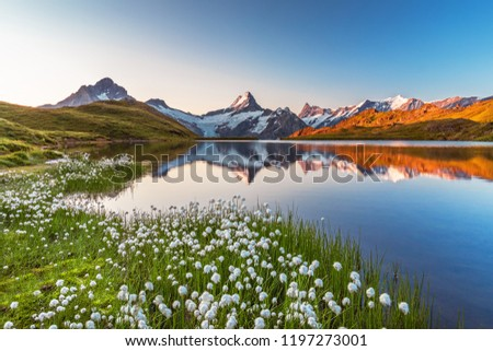 Morning reflection view on Bernese range above Bachalpsee lake. Popular tourist attraction. Location place Swiss alps, Grindelwald valley, Europe. Artistic picture.