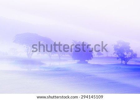 Morning\'s fog over the lake and land, Bright vintage and soft focus process