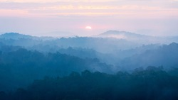 Morning scene of sunrise with tropical rainforest covered with fog and mist at sunrise.