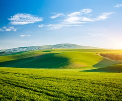 Morning sunlight on the wavy fields and cultivated land of agricultural area. Location place of South Moravia region, Czech Republic, Europe. Minimalistic landscape. Discover the beauty of world.
