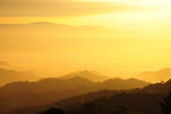 Morning sunshine over the mist forest national park, Thailand