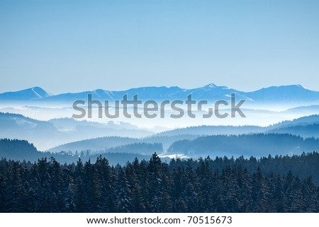 Morning winter calm mountain landscape with coniferous forest