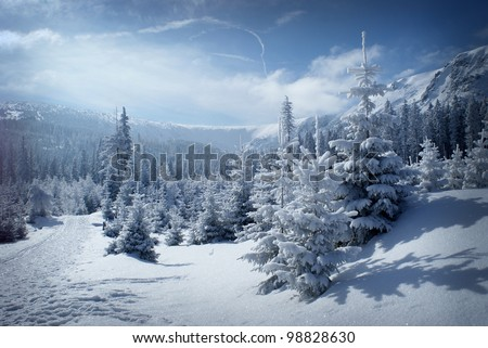 Morning winter scenery with blue sky. Snowy mountain valley.