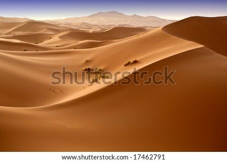 Moroccan desert dune background 04. Blue sky