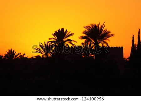 Morocco Marrakesh Silhouette of a kasba wall and palm trees at sunset