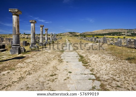 Morocco. Volubilis. Paving stones of the Decumanus street and and surrounding colonnade terminated Tanger's Gate. This site is on UNESCO World Heritage List - stock photo