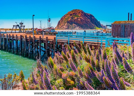 Morro Rock juts up out of the Morro Bay in San Luis Obispo County in California. A wharf and flowers add even more drama. Foto stock ©