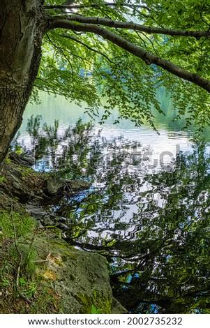 Morske oko lake, Vihorlat mountains, East Slovak republic. Seasonal natural scene. Stock fotó ©