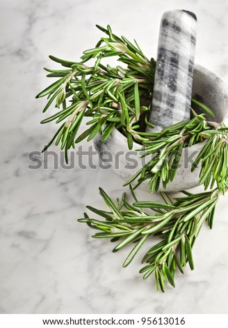 mortar and pestle with fresh rosemary herb on marble surface texture for background
