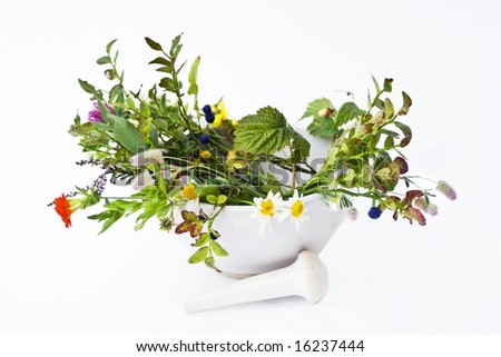 Mortar,herbs  and pestle over white background