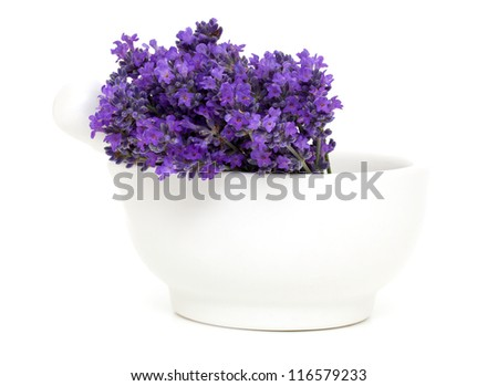 mortar with lavender flowers isolated on white background