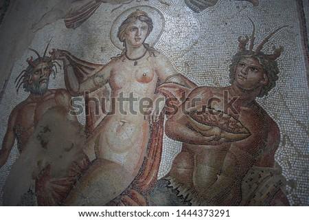 Mosaics in Mosaics in Amphitrite house on Bulla Regia Tunisia house on Bulla Regia Tunisia