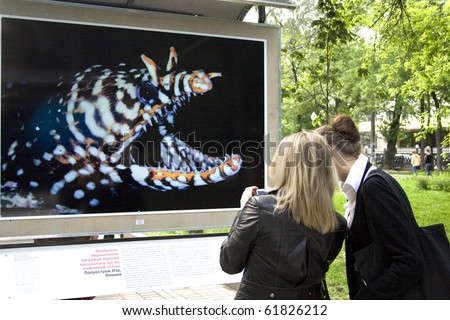 "MOSCOW - JUNE 7: Unidentified women look at a Tiger Moray Eel during a exhibition of photographs by David Doubilet. ""Underwater World"" is presented by ""Afisha-Mir"" magazine on June 7, 2008 in Moscow."