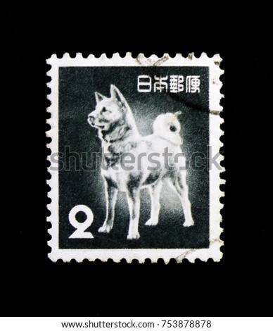 MOSCOW, RUSSIA - OCTOBER 3, 2017: A stamp printed in Japan shows Akita Inu dog (Canis lupus familiaris), Fauna, Flora and National Treasures (1952-59) serie, circa 1953