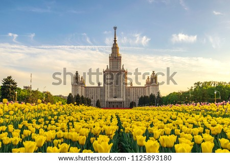 Moscow Russia, spring tulip flowers at Lomonosov Moscow State University #1125893180