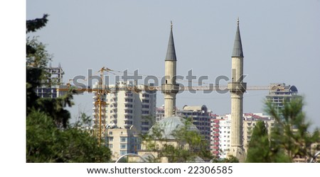 Mosque and the crane